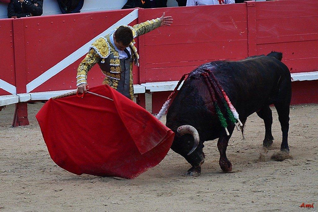 Feria-2012-Corrida-Vendredi-DSC-01831.jpg