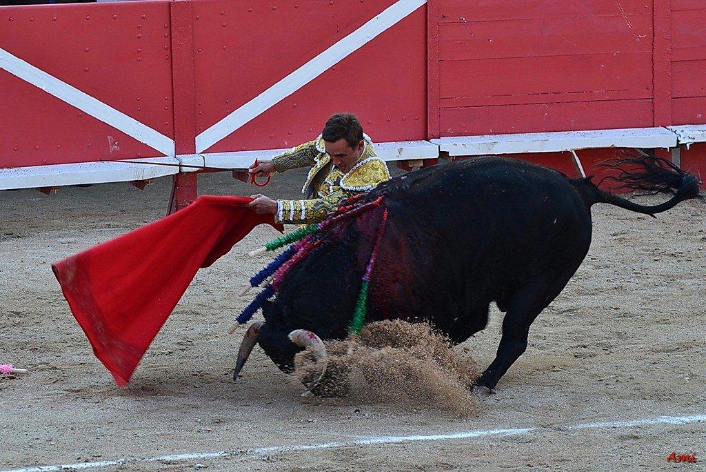 Feria-2012-Corrida-Vendredi-DSC-98321.jpg