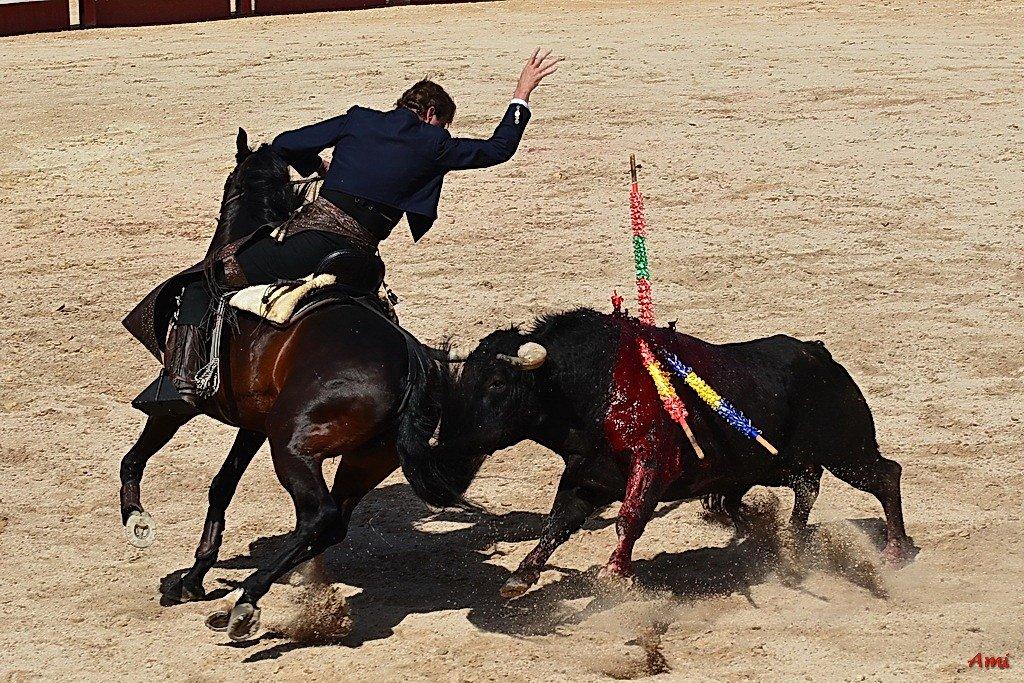 Feria-Arles-2012-DSC-1220.jpg