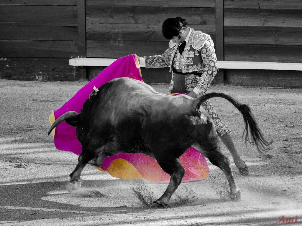 Morante de la Puebla Istres 2013