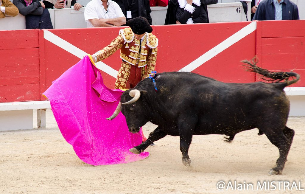 Feria-2015-Samedi-5547.jpg