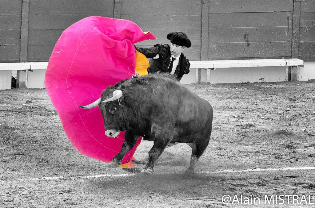 Feria 2015 - Corrida du Samedi