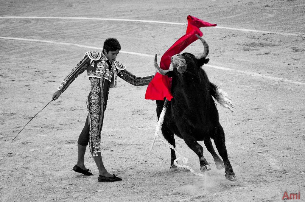Corrida du Samedi - Castella - Manzanares - Lopez Simon - Garcigrande