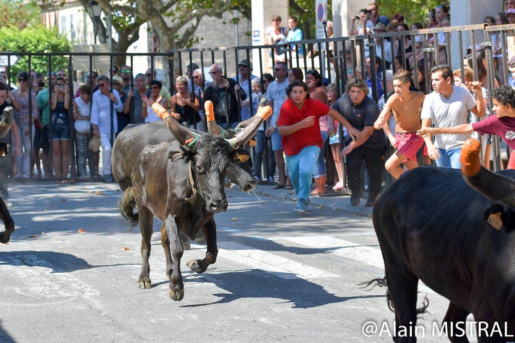 Fontvieille -2016 - Fête du Club Taurin - Samedi