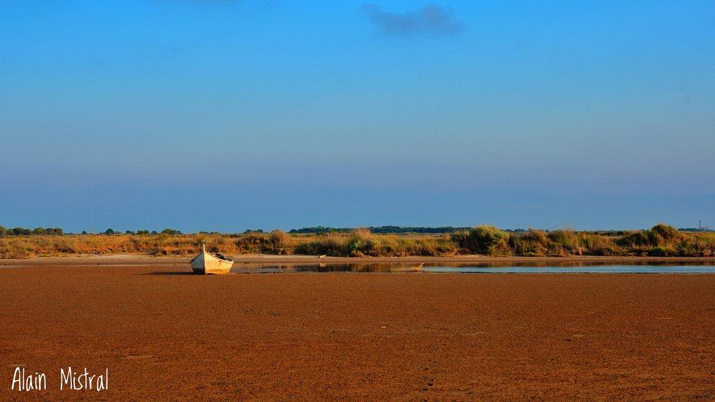 Paysage de Camargue