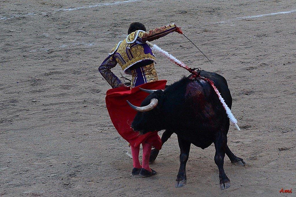 Feria-2012-Corrida-Vendredi-DSC-02921.jpg