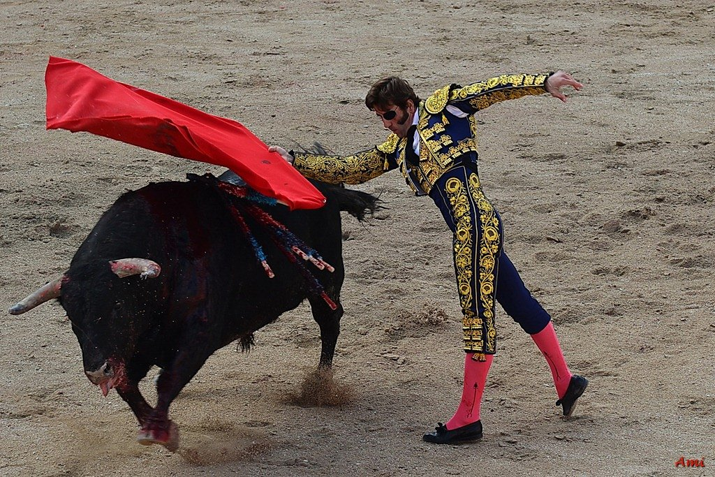 Feria-2012-Corrida-Vendredi-DSC-9765.jpg