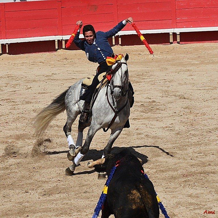 Feria-Arles-2012-DSC-1170.jpg