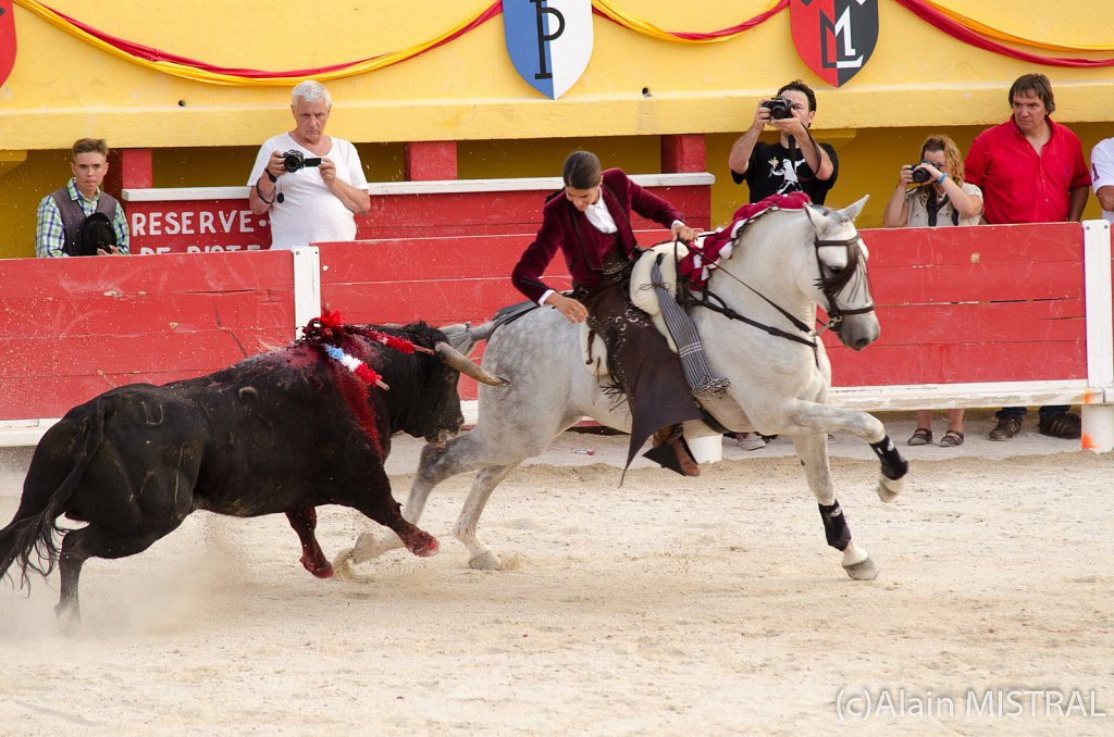 Sainte Maries 2013 - Corrida à cheval