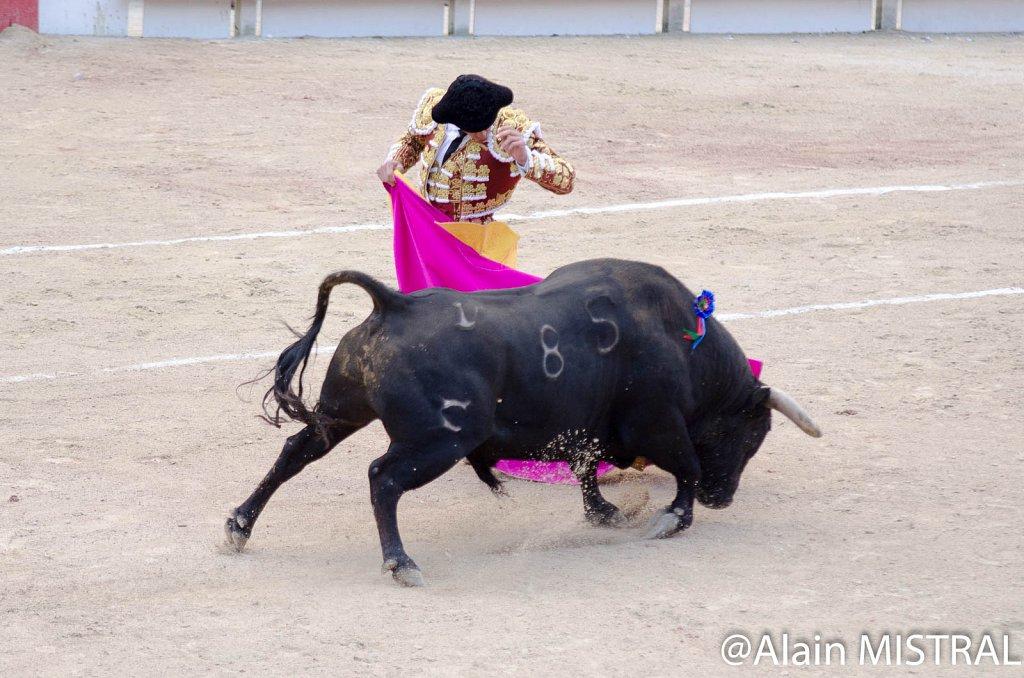 Feria-2015-Samedi-5814.jpg